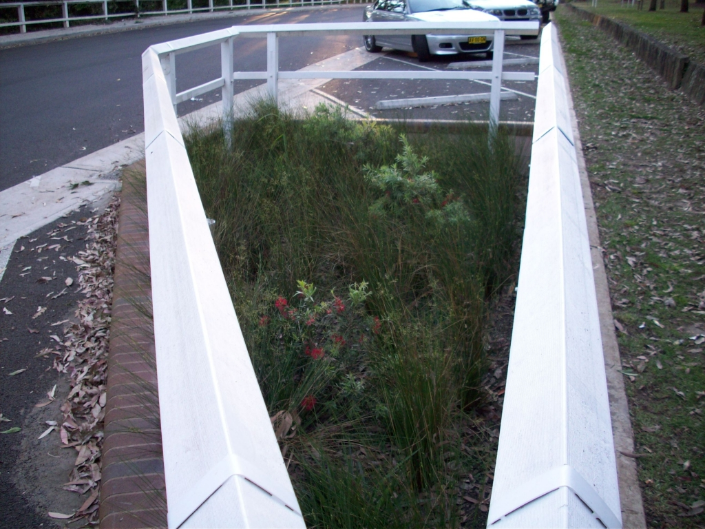 Karuah Bioretention established 2008 (Source: Ku-Ring-Gai Council 2017)